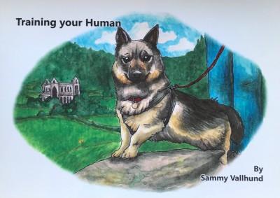 Training Your Human