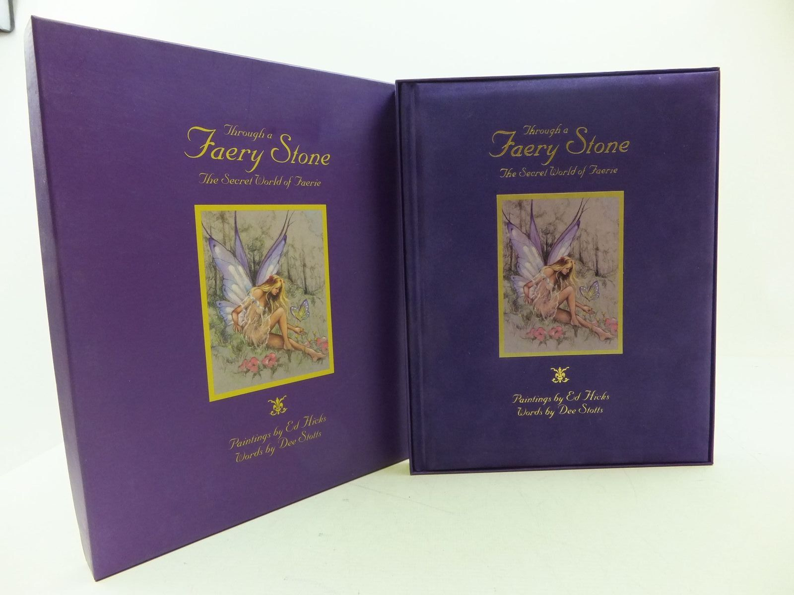Photo of THROUGH A FAERY STONE THE SECRET WORLD OF THE FAERIE written by Stotts, Dee illustrated by Hicks, Ed. published by Aappl Artists' and Photographers' press Ltd. (STOCK CODE: 1108713)  for sale by Stella & Rose's Books