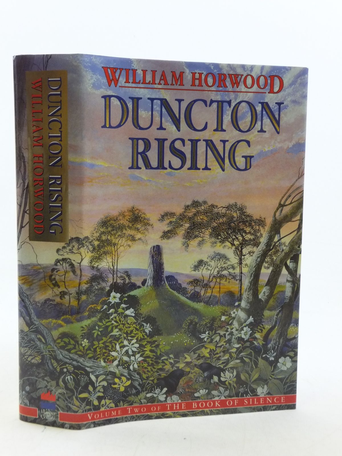 Photo of DUNCTON RISING written by Horwood, William published by Harper Collins (STOCK CODE: 1109095)  for sale by Stella & Rose's Books