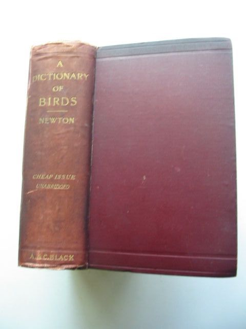 Photo of A DICTIONARY OF BIRDS written by Newton, Alfred<br />Gadow, Hans published by Adam & Charles Black (STOCK CODE: 1201437)  for sale by Stella & Rose's Books