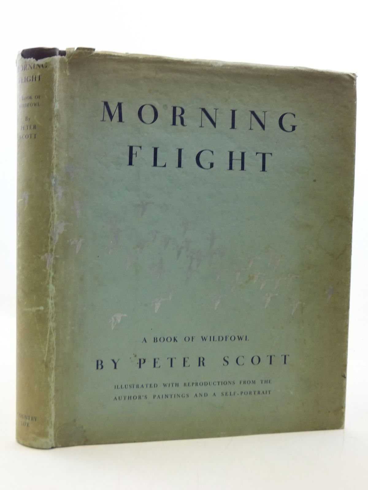 Photo of MORNING FLIGHT A BOOK OF WILDFOWL