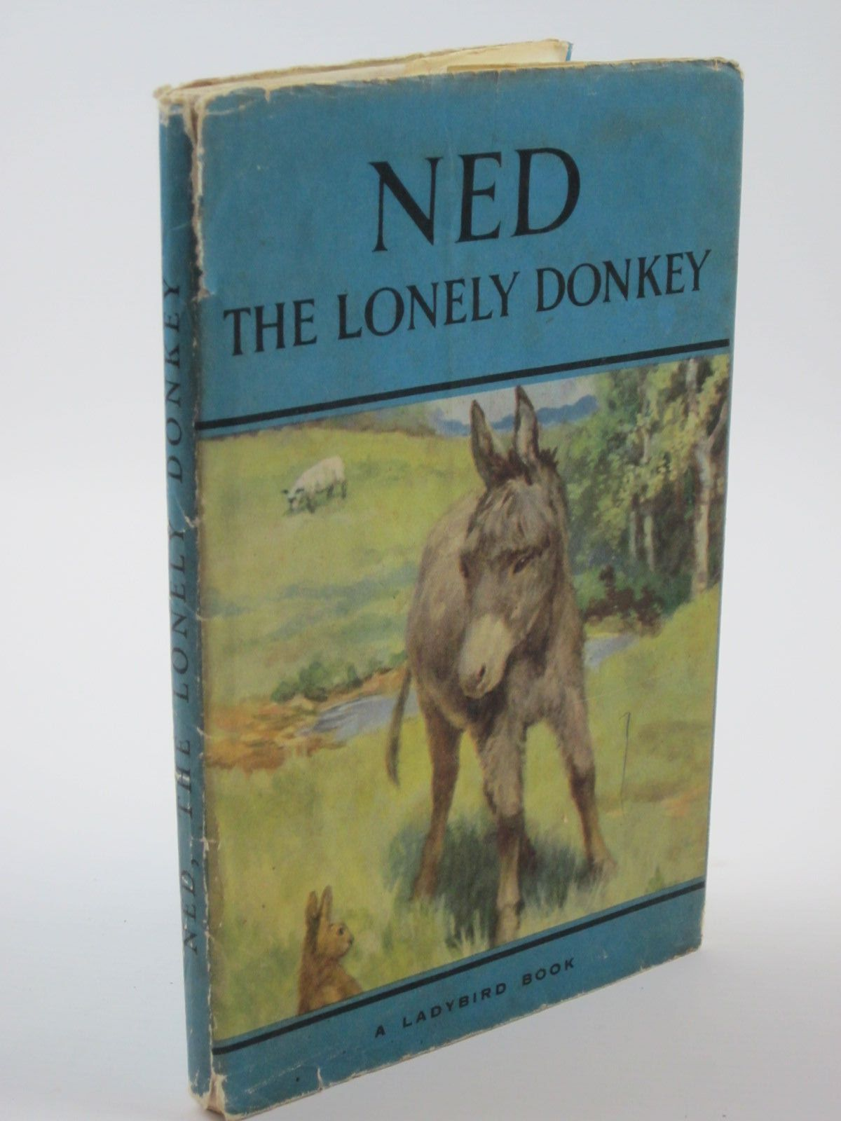 Photo of NED THE LONELY DONKEY