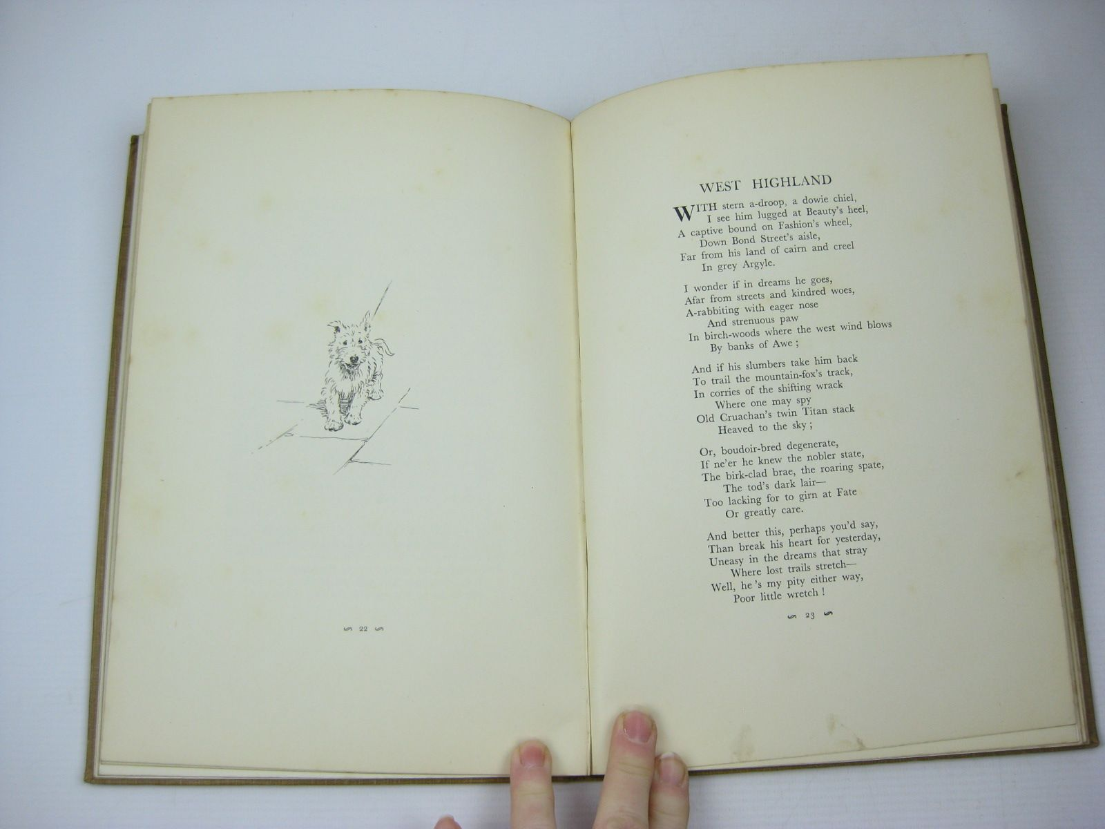 Photo of A DOZEN DOGS OR SO written by Chalmers, Patrick R. illustrated by Aldin, Cecil published by Eyre & Spottiswoode (STOCK CODE: 1313226)  for sale by Stella & Rose's Books