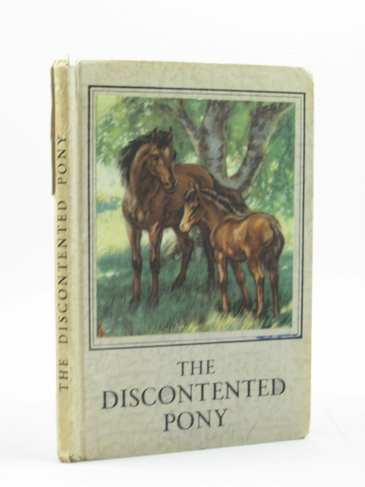 Photo of THE DISCONTENTED PONY