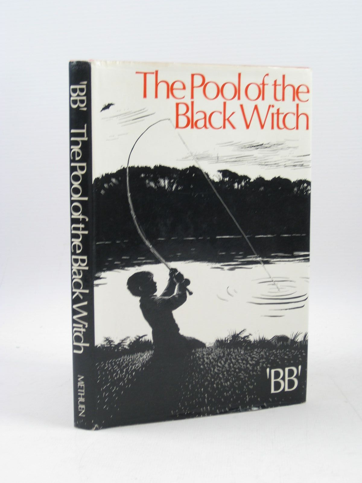 Photo of THE POOL OF THE BLACK WITCH