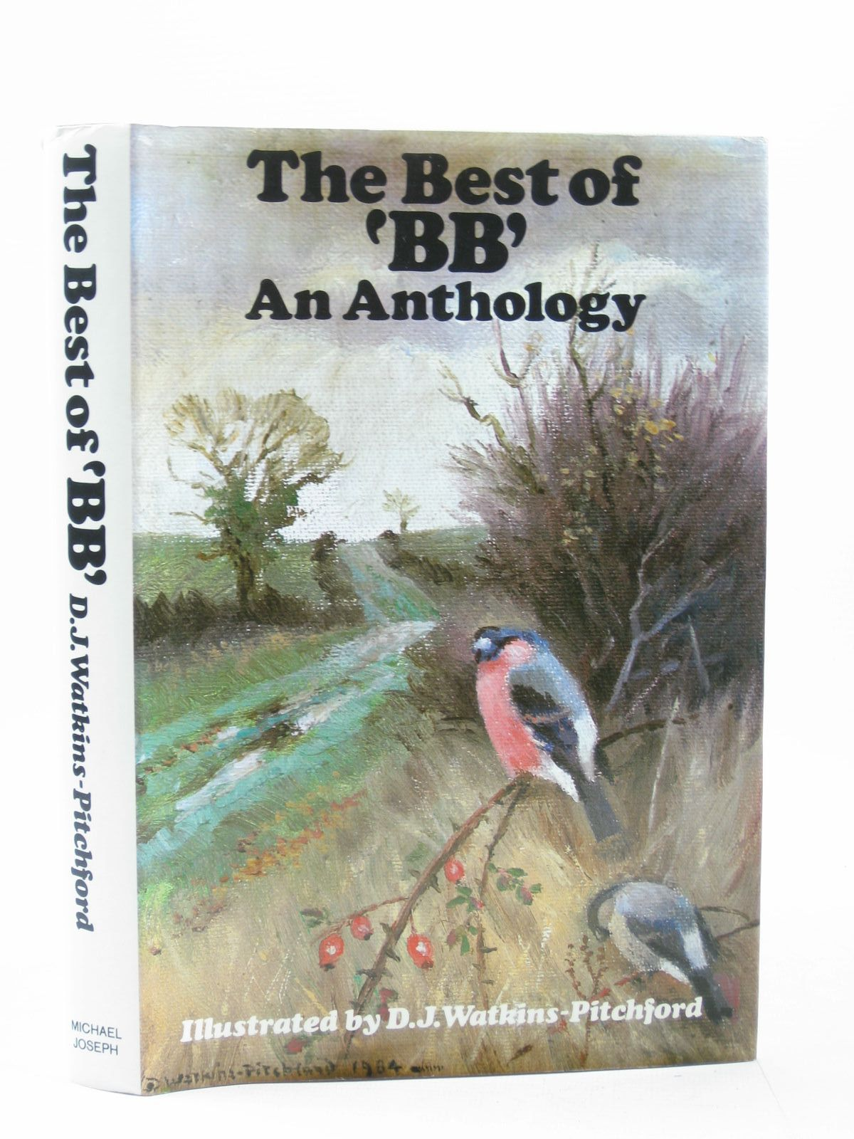 Photo of THE BEST OF BB AN ANTHOLOGY