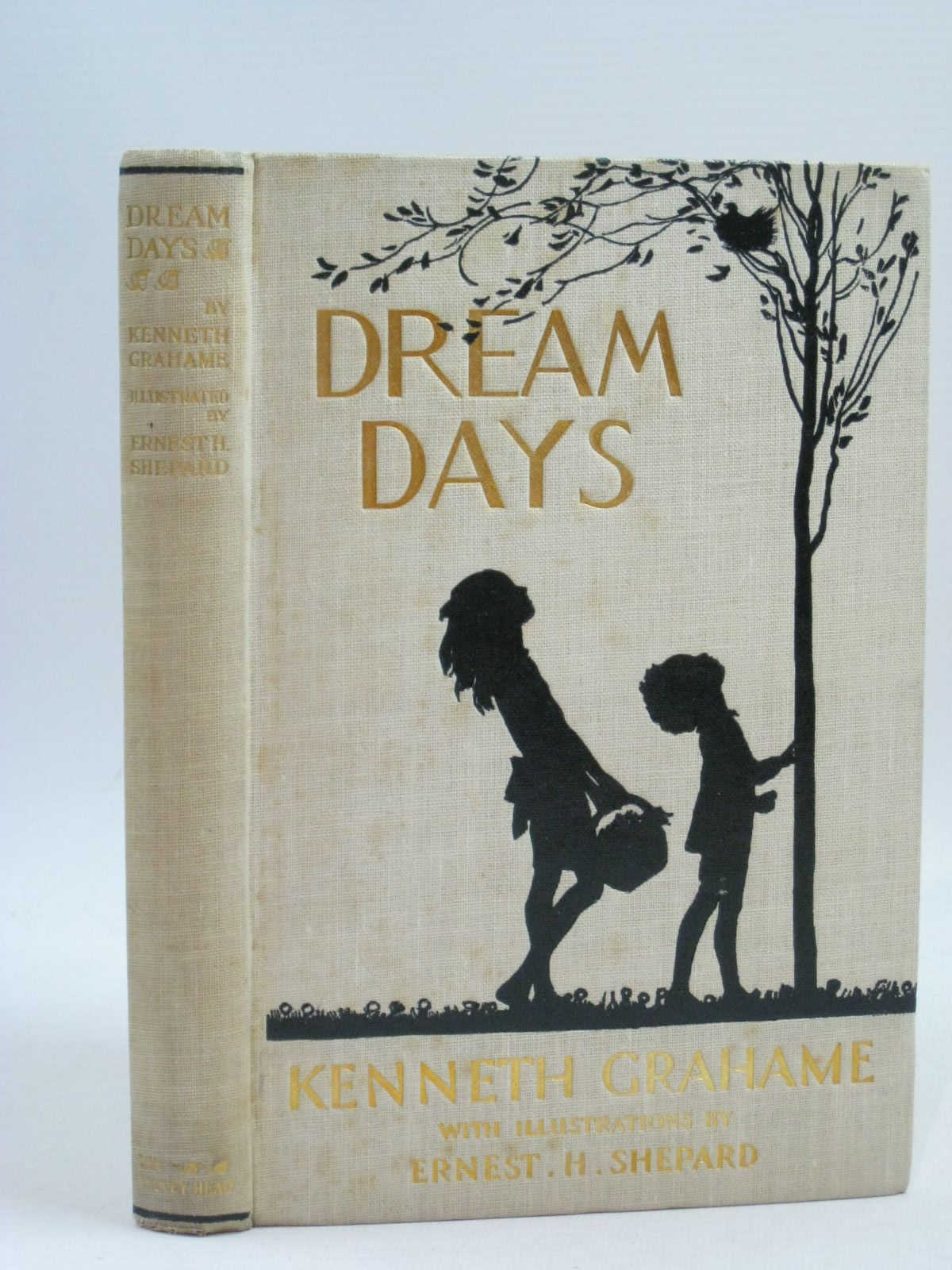 Photo of DREAM DAYS- Stock Number: 1315229