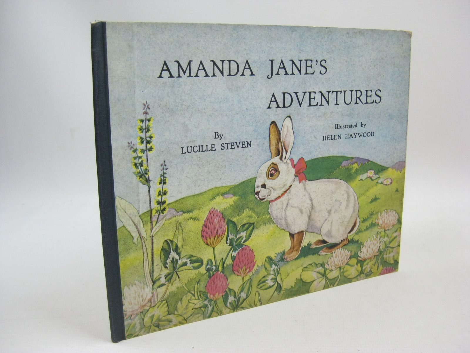 Photo of AMANDA JANE'S ADVENTURES written by Steven, Lucille illustrated by Haywood, Helen published by Art And Educational Publishers Ltd. (STOCK CODE: 1315434)  for sale by Stella & Rose's Books