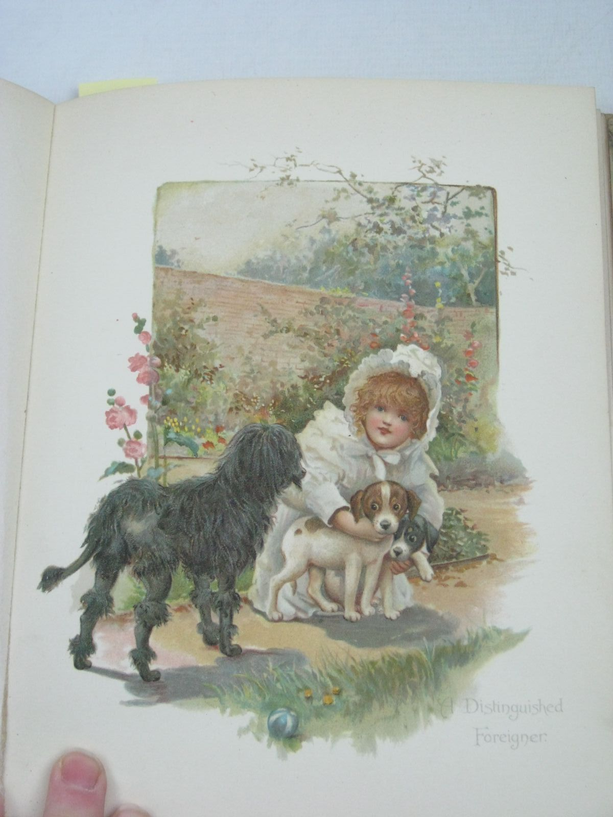 Photo of SUNNY LAND STORIES written by Molesworth, Olive<br />Bingham, Clifton<br />Hoyer, M.A.<br />Nesbit, E.<br />et al, illustrated by Bennett, Harriett M. published by Ernest Nister, E.P. Dutton & Co. (STOCK CODE: 1316195)  for sale by Stella & Rose's Books