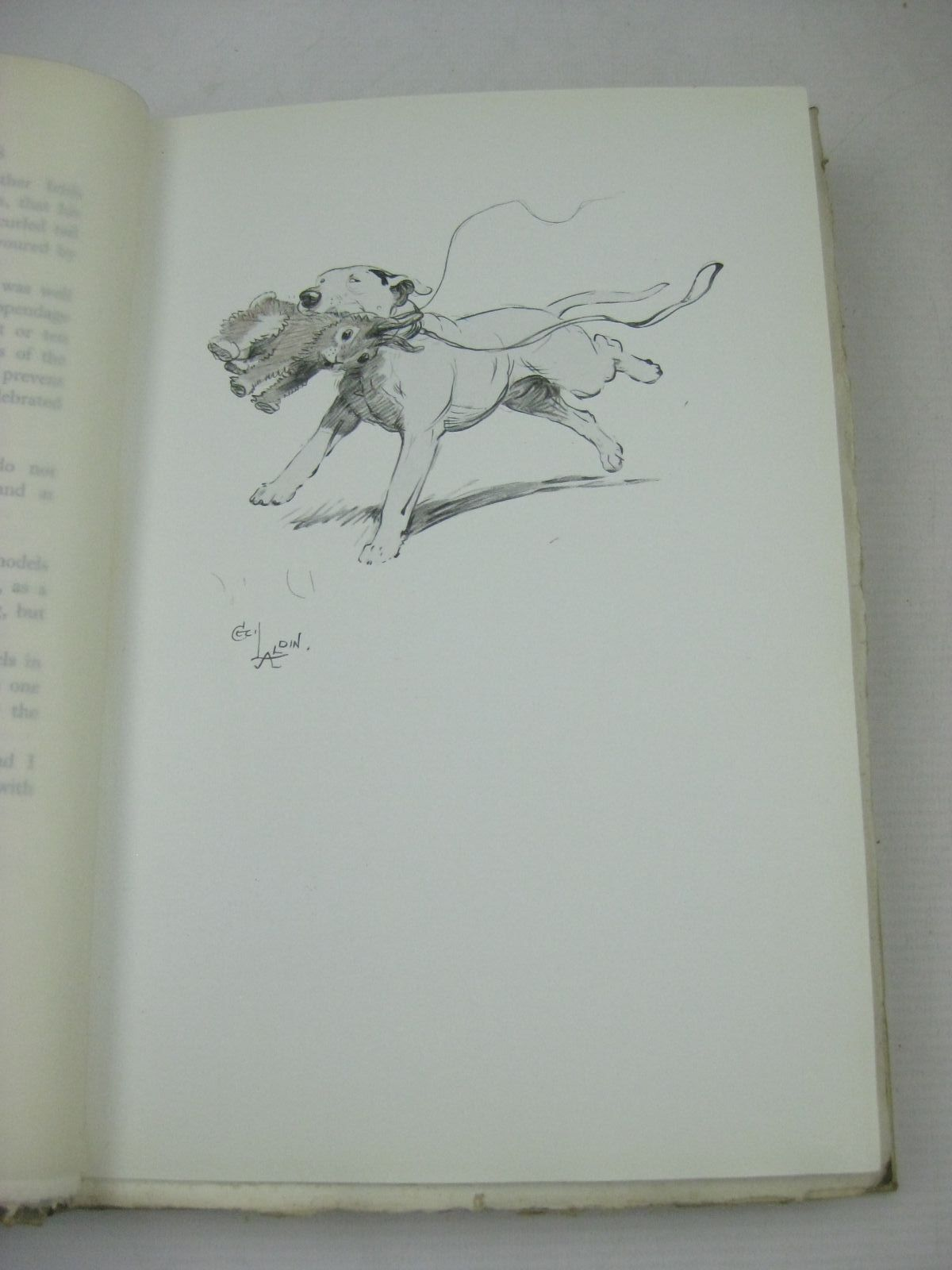 Photo of AN ARTIST'S MODELS written by Aldin, Cecil illustrated by Aldin, Cecil published by H. F. & G. Witherby (STOCK CODE: 1316213)  for sale by Stella & Rose's Books