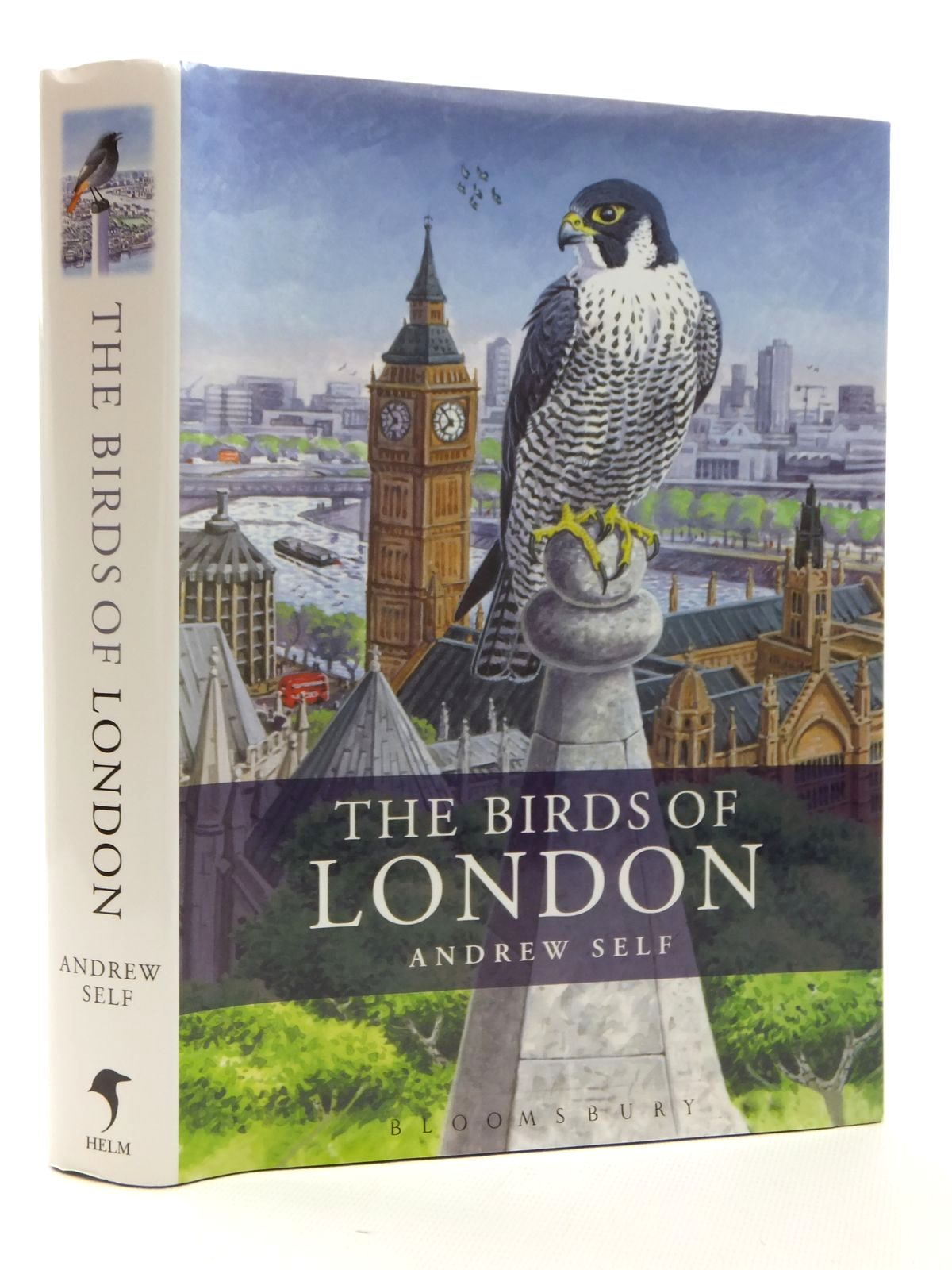 Photo of THE BIRDS OF LONDON written by Self, Andrew illustrated by Simpson, Fraser published by Bloomsbury, Christopher Helm (STOCK CODE: 1317150)  for sale by Stella & Rose's Books