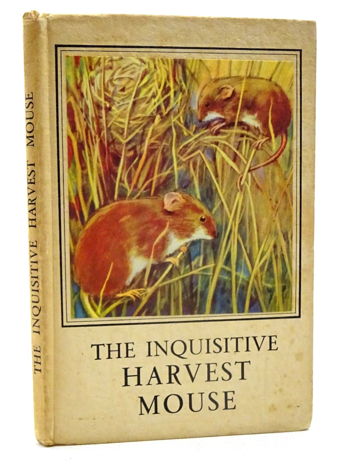 Photo of THE INQUISITIVE HARVEST MOUSE written by Barr, Noel illustrated by Hickling, P.B. published by Wills & Hepworth Ltd. (STOCK CODE: 1317397)  for sale by Stella & Rose's Books