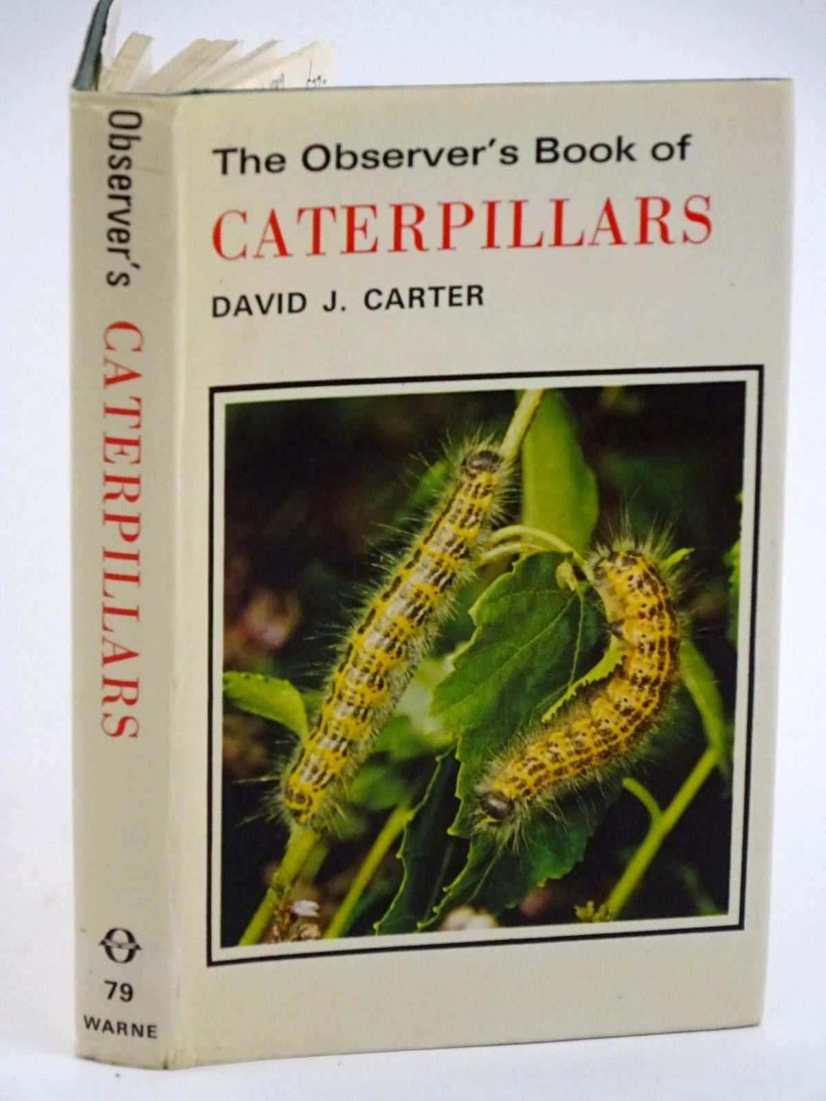 Photo of THE OBSERVER'S BOOK OF CATERPILLARS written by Carter, D.J. illustrated by Riley, Gordon published by Frederick Warne (STOCK CODE: 1318113)  for sale by Stella & Rose's Books