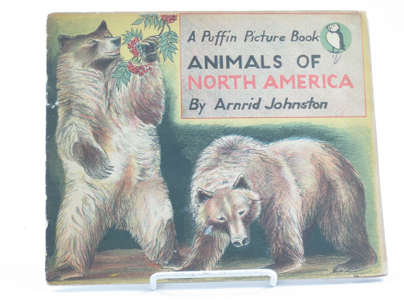Photo of ANIMALS OF NORTH AMERICA