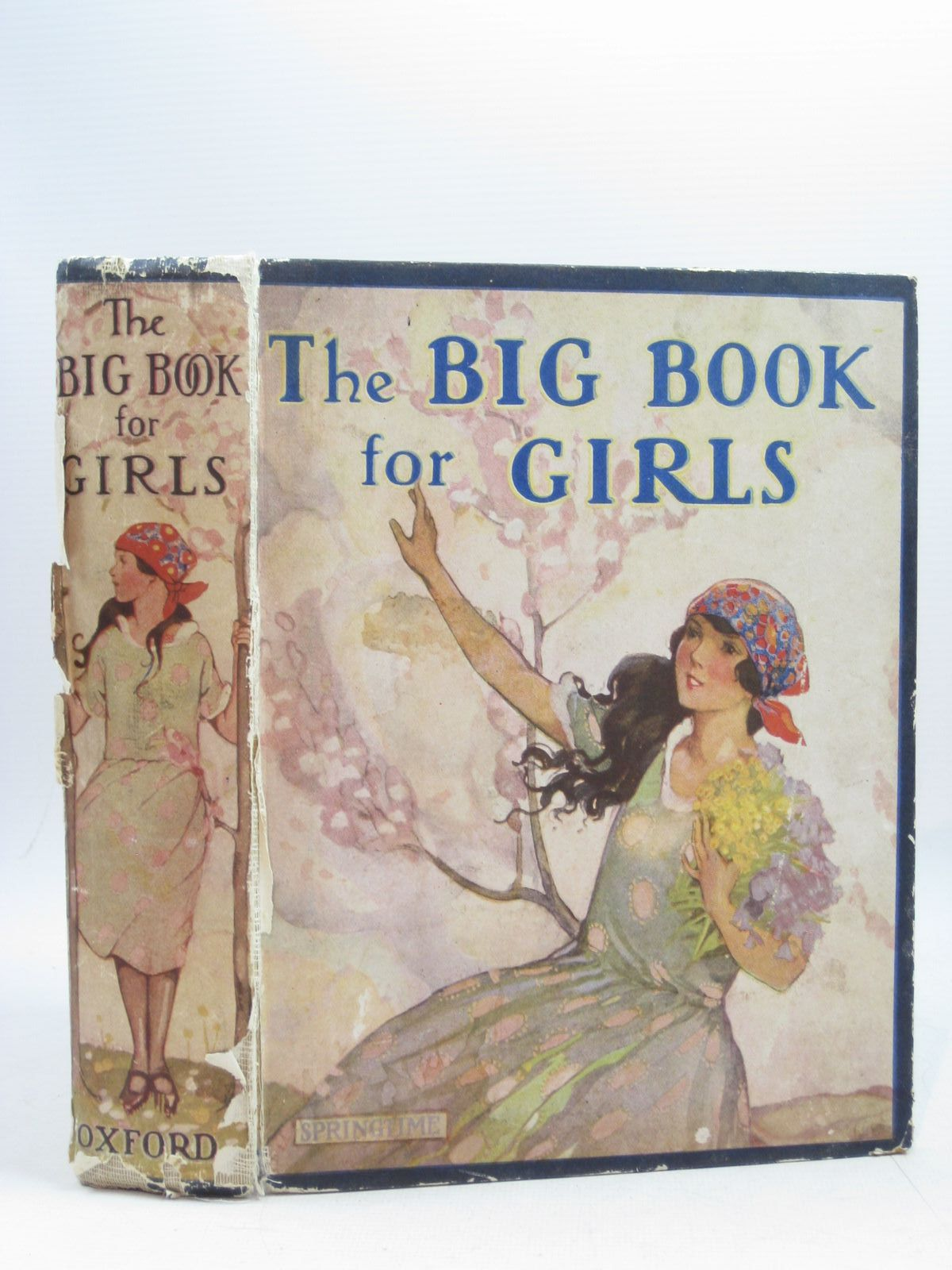Photo of THE BIG BOOK FOR GIRLS