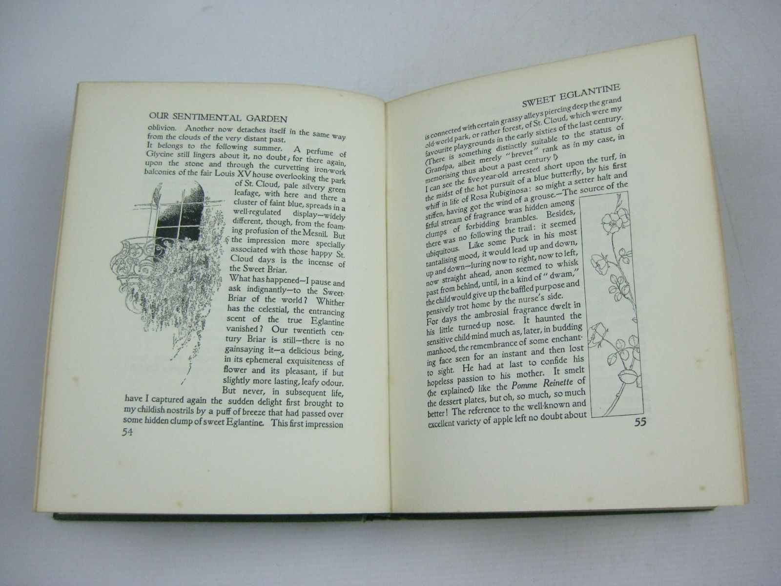 Photo of OUR SENTIMENTAL GARDEN written by Castle, Agnes<br />Castle, Egerton illustrated by Robinson, Charles published by William Heinemann (STOCK CODE: 1404229)  for sale by Stella & Rose's Books