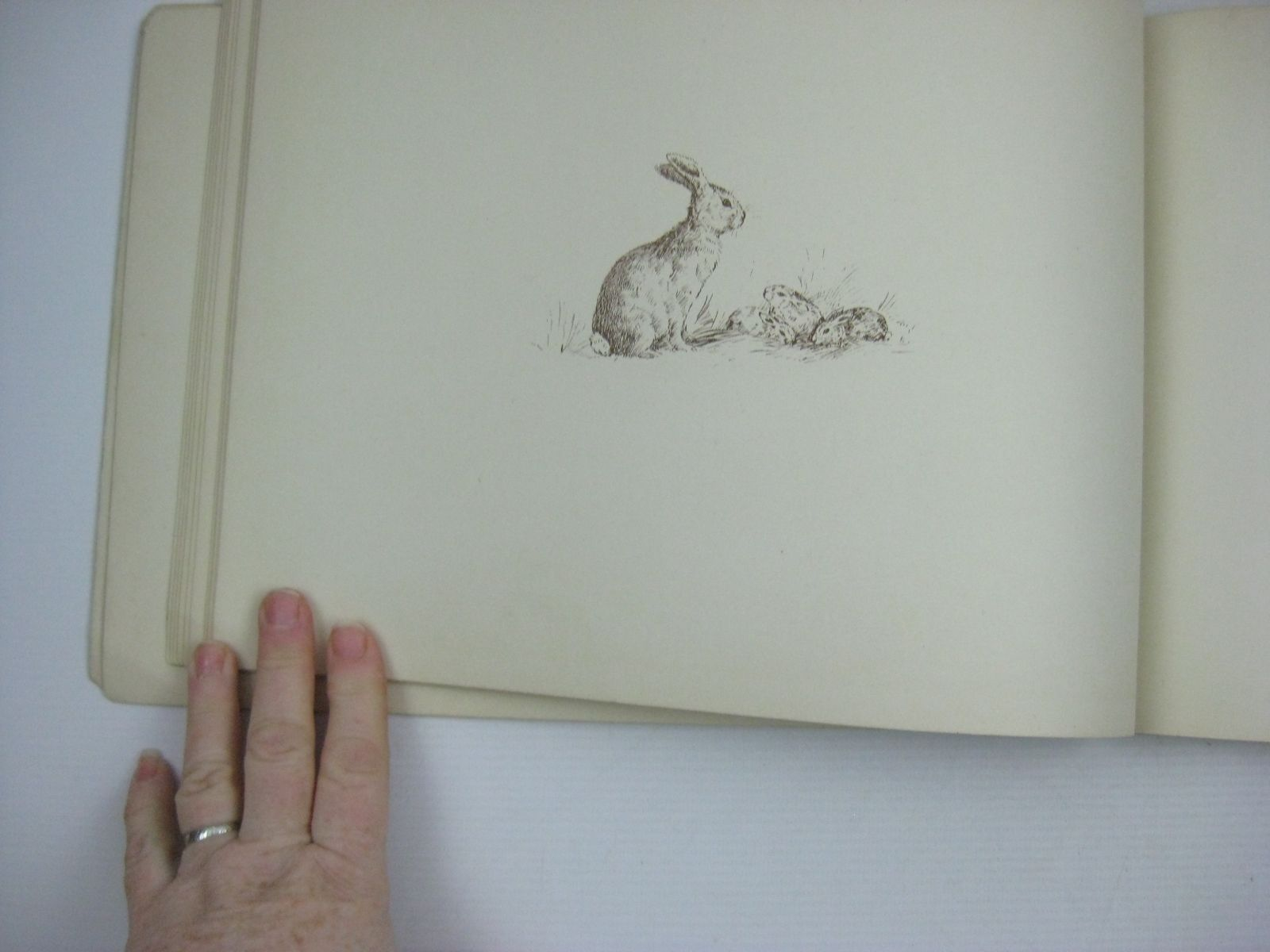 Photo of THE HOLE AND CORNER BOOK written by Parker, B. illustrated by Parker, N. published by W. & R. Chambers (STOCK CODE: 1404293)  for sale by Stella & Rose's Books
