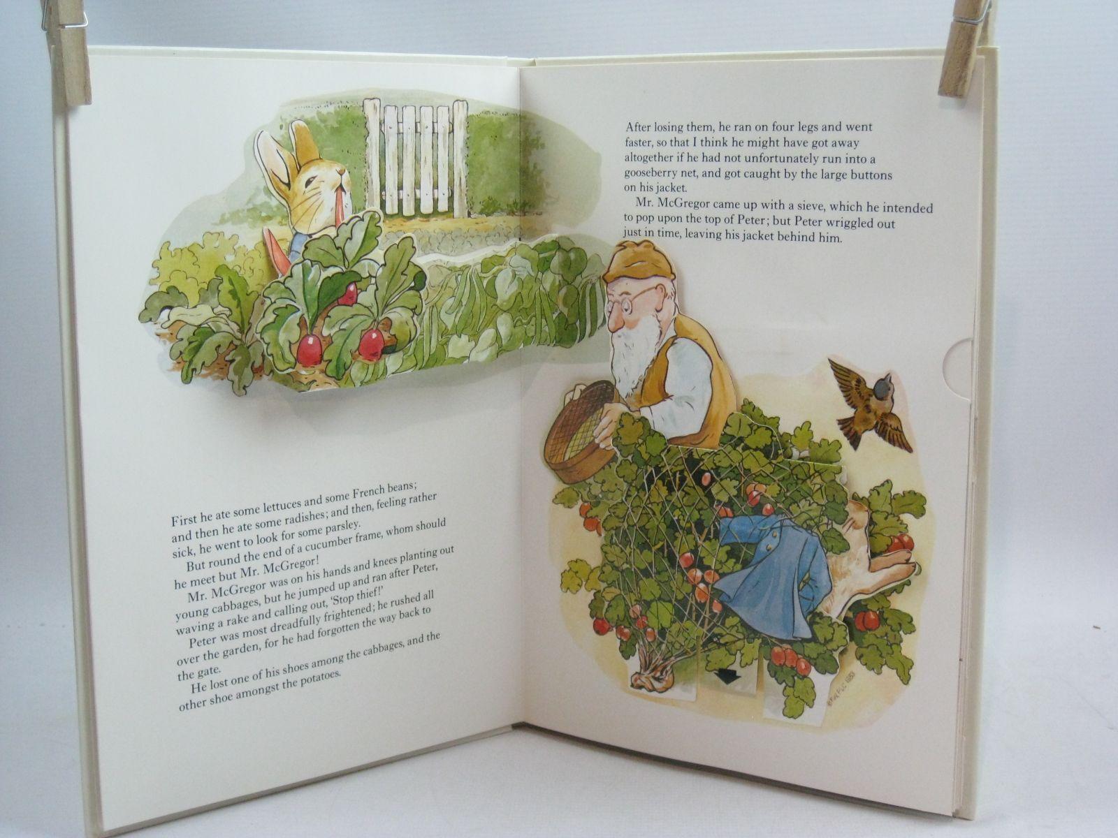 The peter rabbit pop-up book 1983 porsche