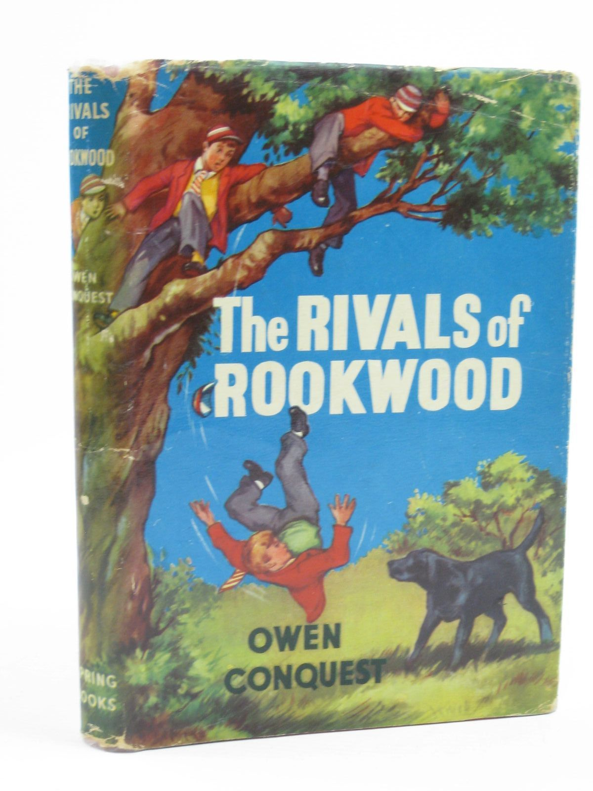 Photo of THE RIVALS OF ROOKWOOD written by Conquest, Owen published by Spring Books (STOCK CODE: 1406918)  for sale by Stella & Rose's Books