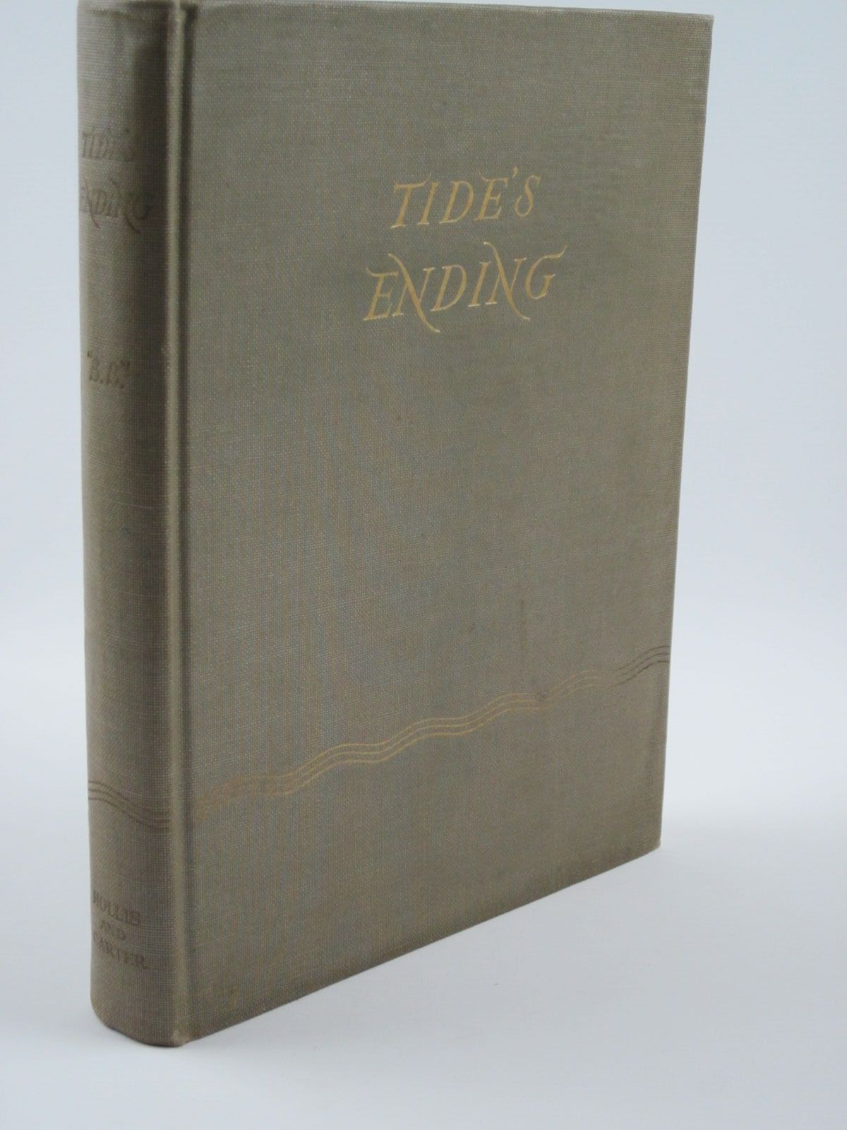 Photo of TIDE'S ENDING