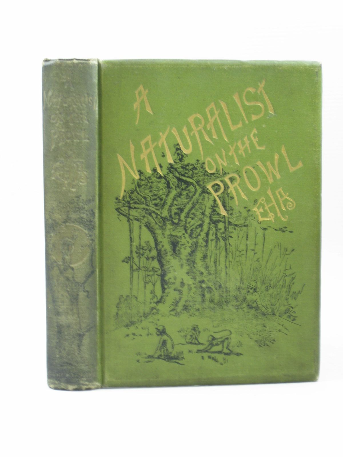 Photo of A NATURALIST ON THE PROWL written by E.H.A., illustrated by Sterndale, R.A. published by W. Thacker & Co. (STOCK CODE: 1502922)  for sale by Stella & Rose's Books