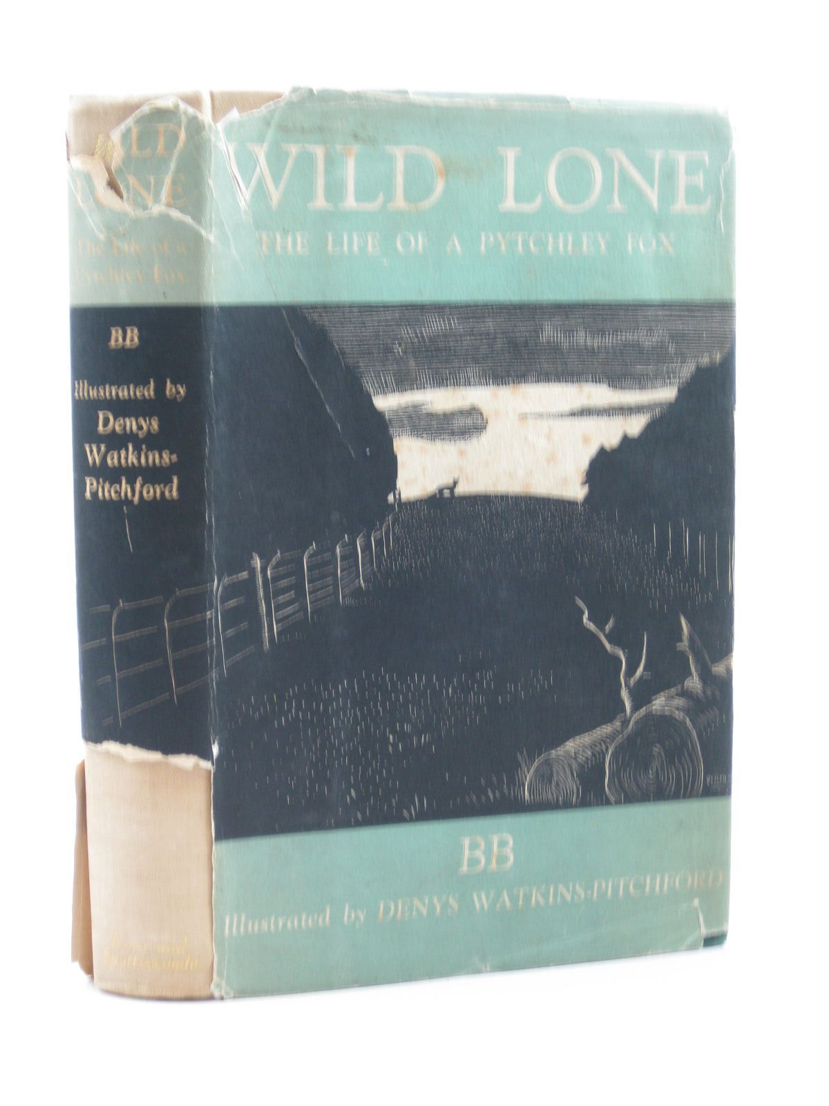 Photo of WILD LONE