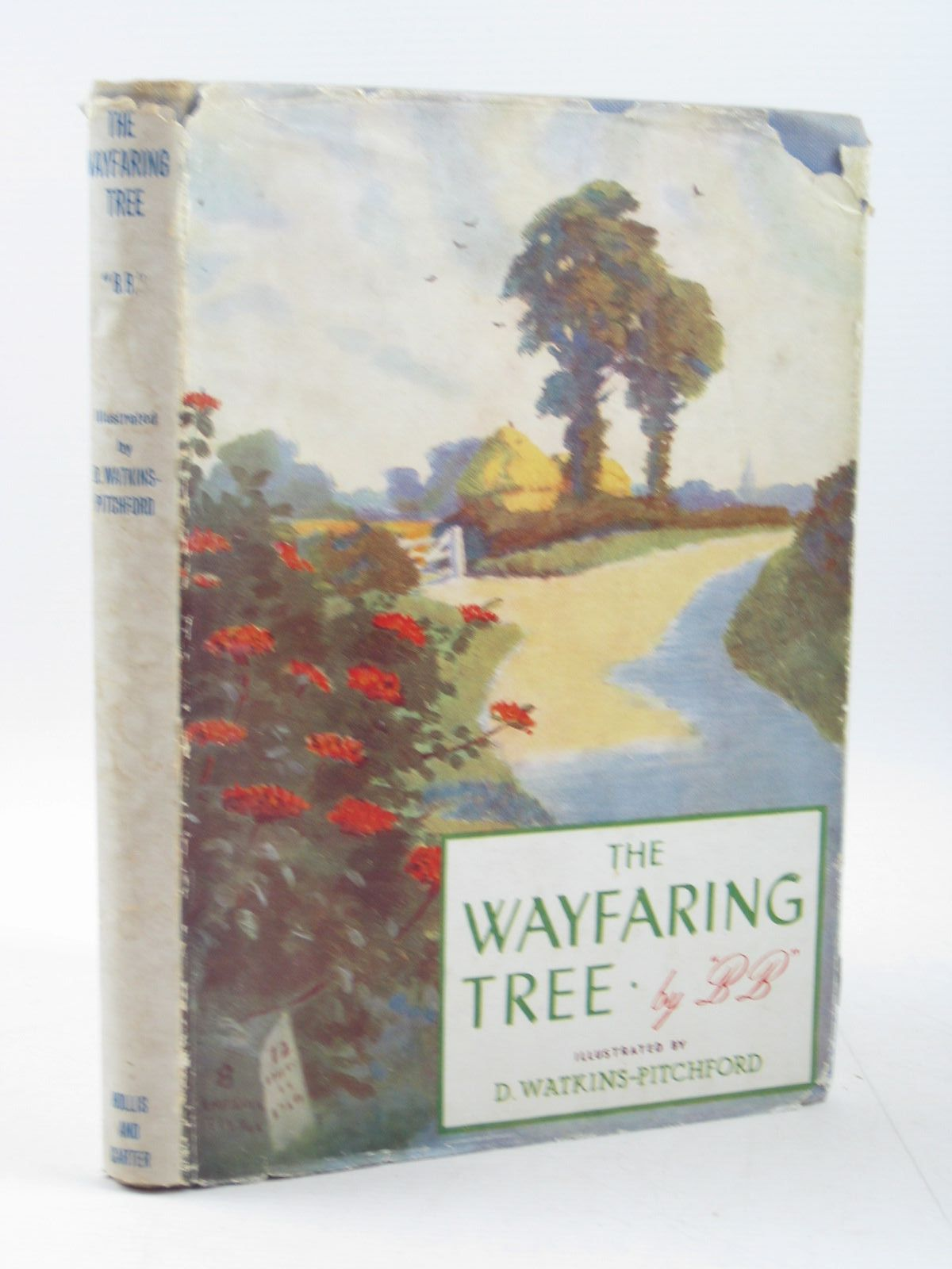Photo of THE WAYFARING TREE