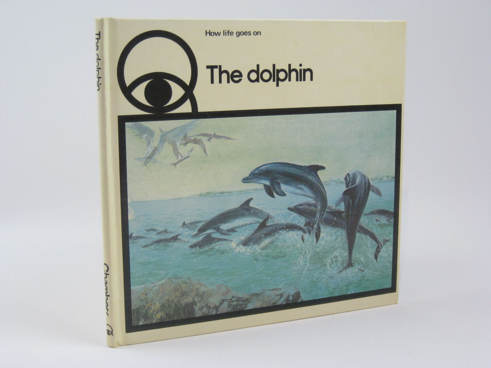 Photo of HOW LIFE GOES ON THE DOLPHIN written by Roels, Iliane<br />Nicolas, Claude illustrated by Baynes, Pauline published by W. & R. Chambers Limited (STOCK CODE: 1506711)  for sale by Stella & Rose's Books