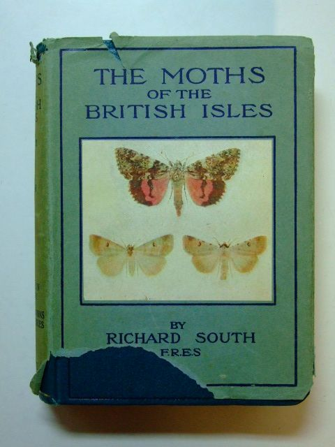 Photo of THE MOTHS OF THE BRITISH ISLES SERIES II written by South, Richard<br />Edelsten, H.M. published by Frederick Warne & Co Ltd. (STOCK CODE: 1601127)  for sale by Stella & Rose's Books