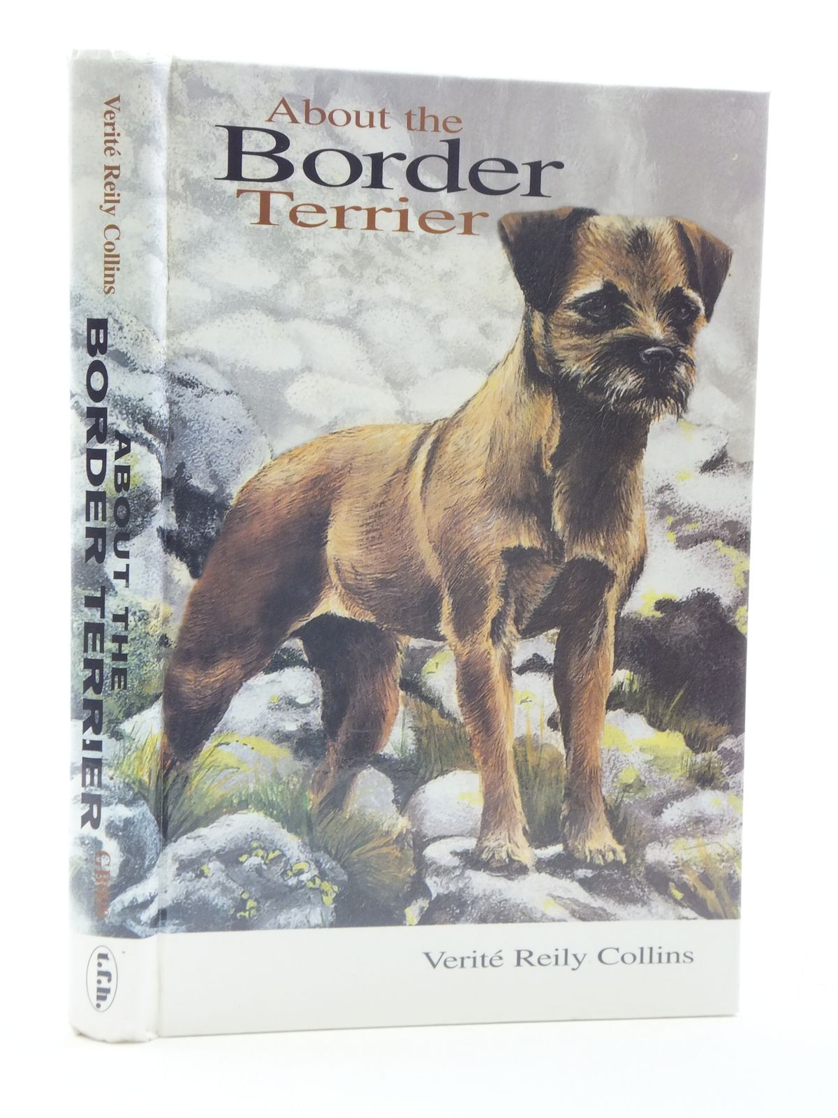 Photo of ABOUT THE BORDER TERRIER