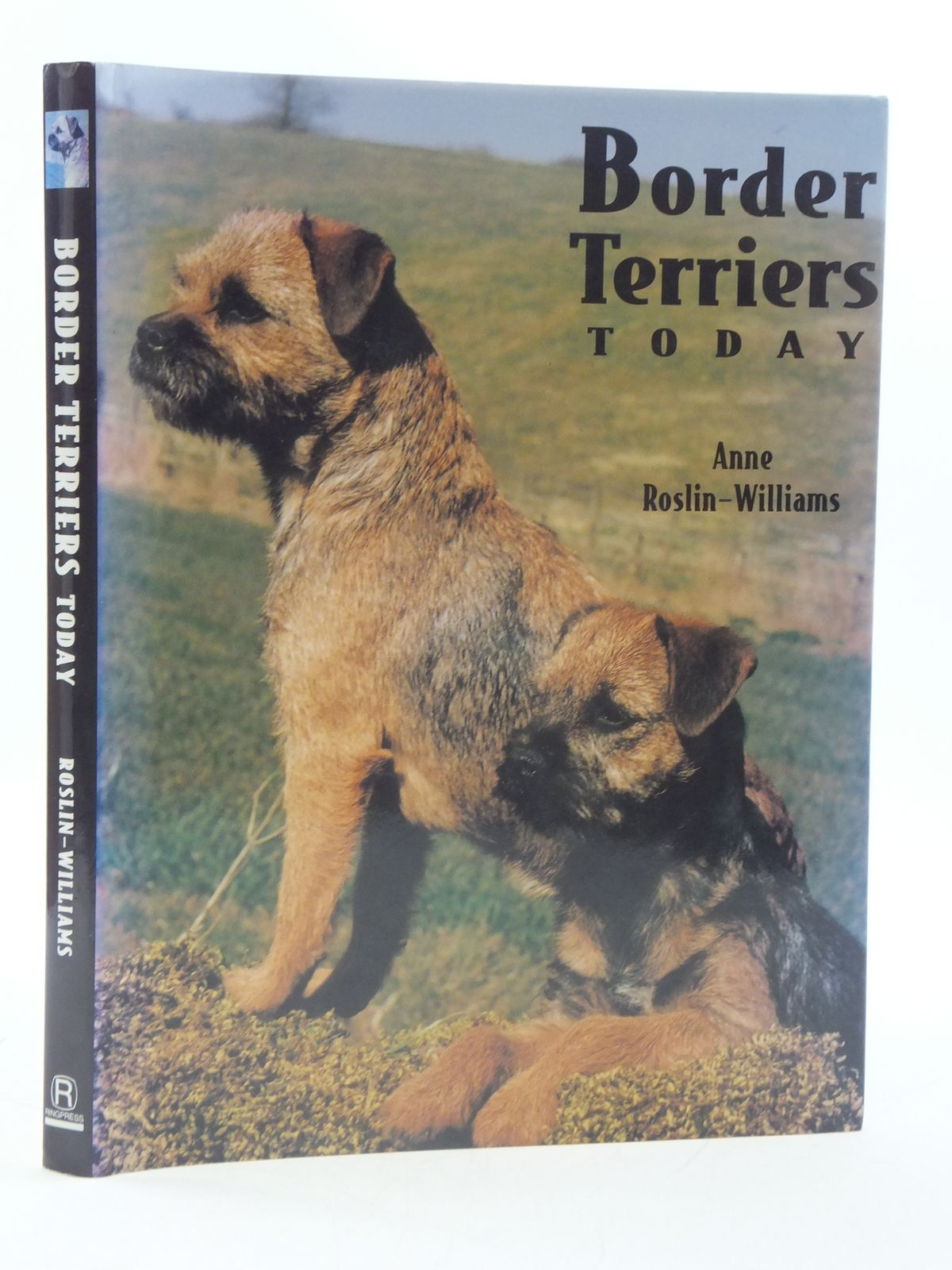 Photo of BORDER TERRIERS TODAY