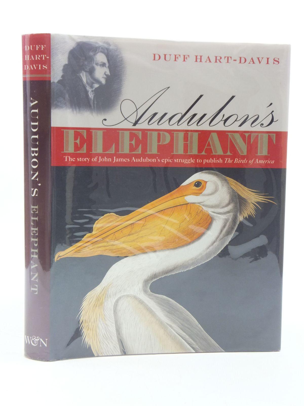 Photo of AUDUBON'S ELEPHANT