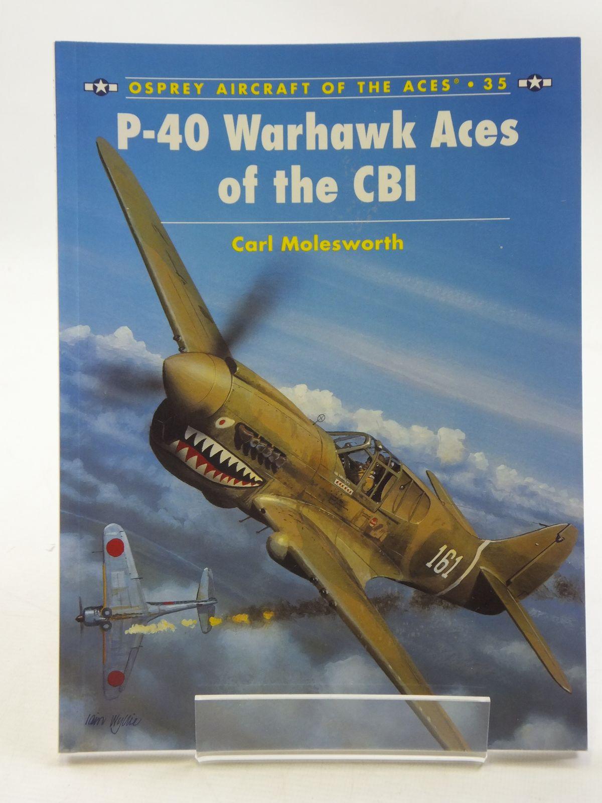 Photo of P-40 WARHAWK ACES OF THE CBI
