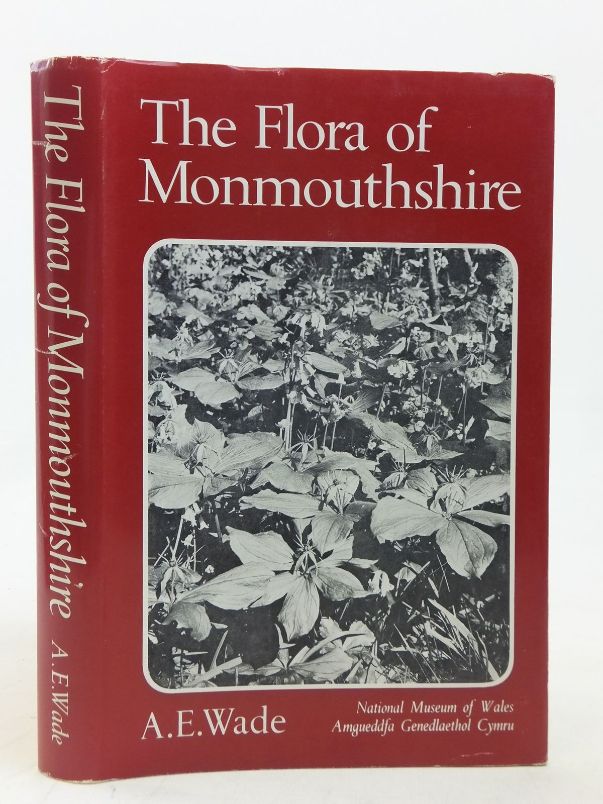 Photo of THE FLORA OF MONMOUTHSHIRE written by Wade, A.E. published by National Museum of Wales (STOCK CODE: 1606433)  for sale by Stella & Rose's Books