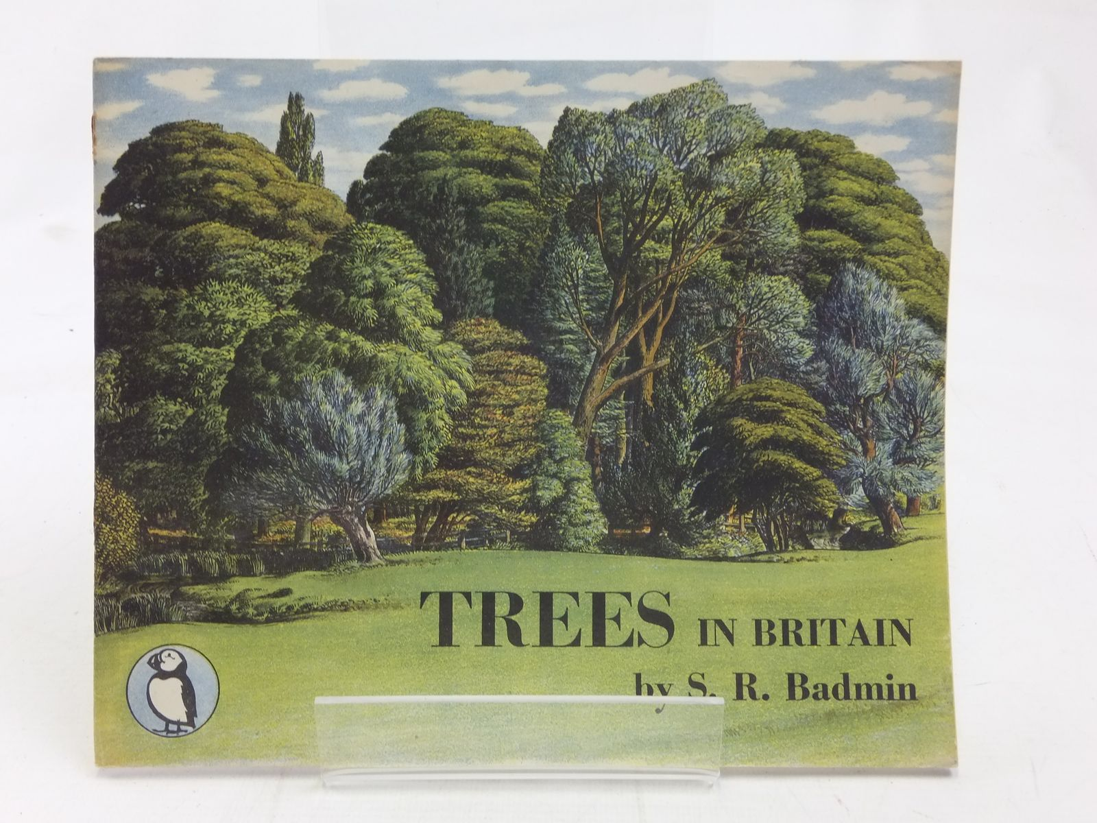 Photo of TREES IN BRITAIN