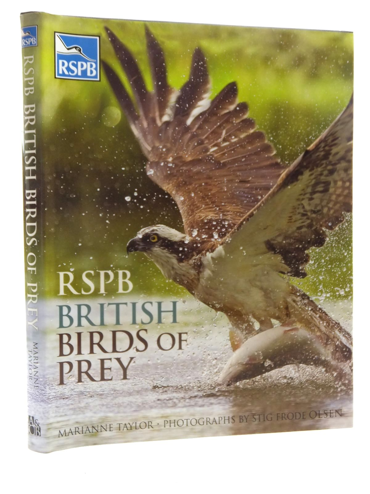 Photo of RSPB BRITISH BIRDS OF PREY written by Taylor, Marianne published by A & C Black Publishers, Christopher Helm (STOCK CODE: 1610064)  for sale by Stella & Rose's Books