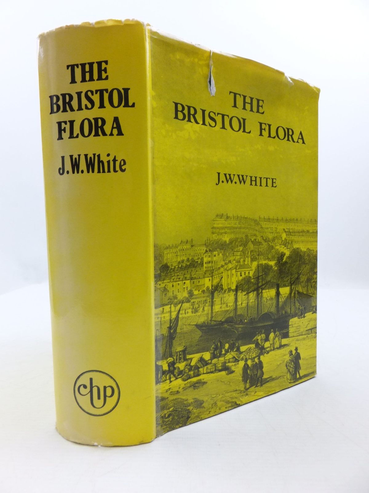 Photo of THE FLORA OF BRISTOL written by White, James Walter published by Chatford House Press Ltd. (STOCK CODE: 1708168)  for sale by Stella & Rose's Books