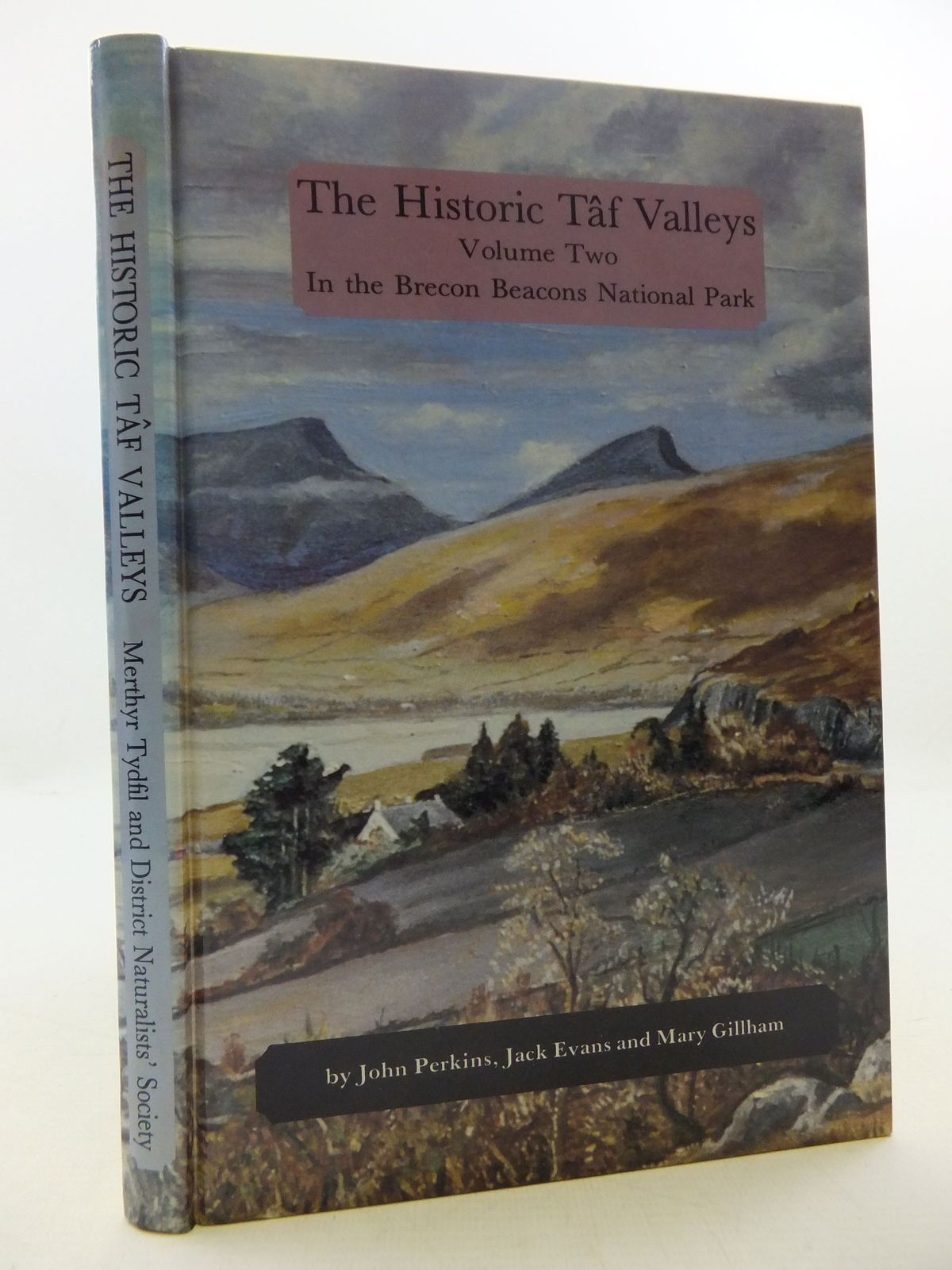 Photo of THE HISTORIC TAF VALLEYS VOLUME TWO written by Perkins, John<br />Evans, Jack<br />Gillham, Mary E. published by Merthyr Tydfil and District Naturalists' Society (STOCK CODE: 1709063)  for sale by Stella & Rose's Books