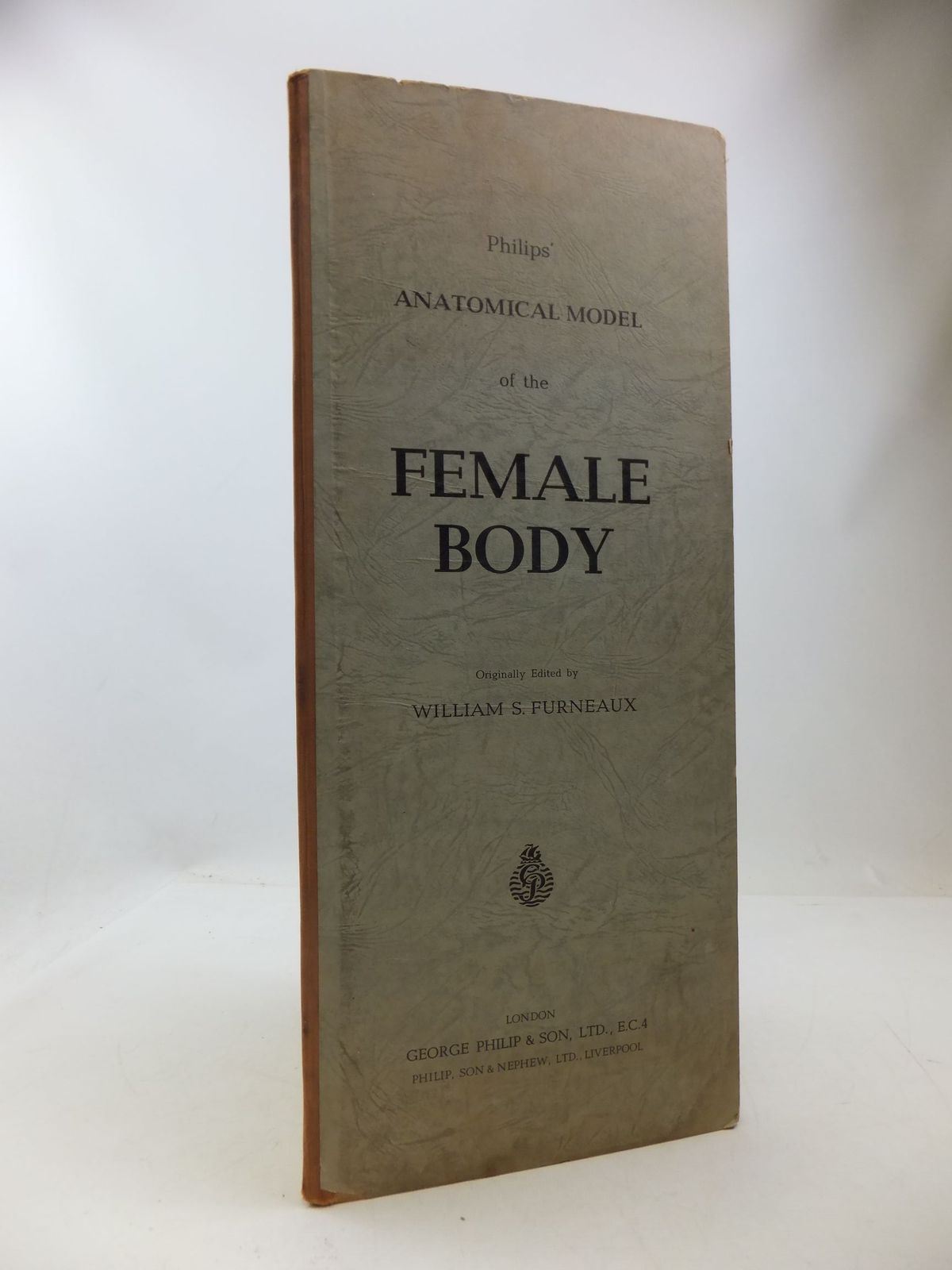 Photo of PHILIPS' ANATOMICAL MODEL OF THE FEMALE HUMAN BODY