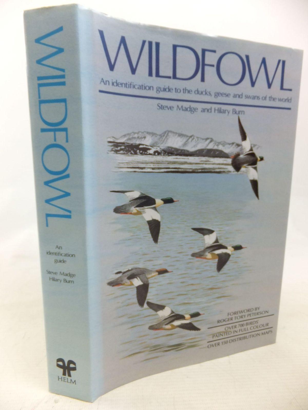 Photo of WILDFOWL