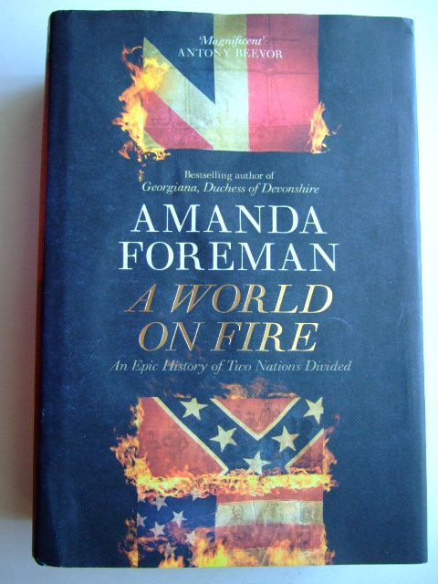 Photo of A WORLD ON FIRE AN EPIC HISTORY OF TWO NATIONS DIVIDED written by Foreman, Amanda published by Allen Lane (STOCK CODE: 1804263)  for sale by Stella & Rose's Books