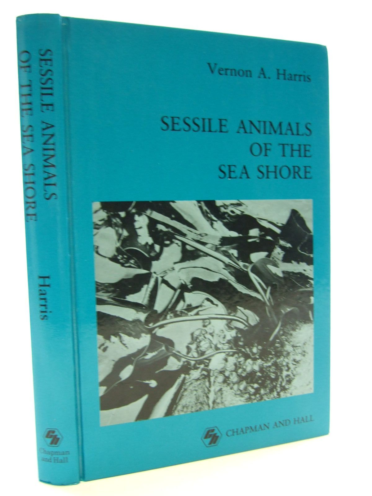 Photo of SESSILE ANIMALS OF THE SEA SHORE written by Harris, Vernon A. published by Chapman & Hall (STOCK CODE: 1805653)  for sale by Stella & Rose's Books