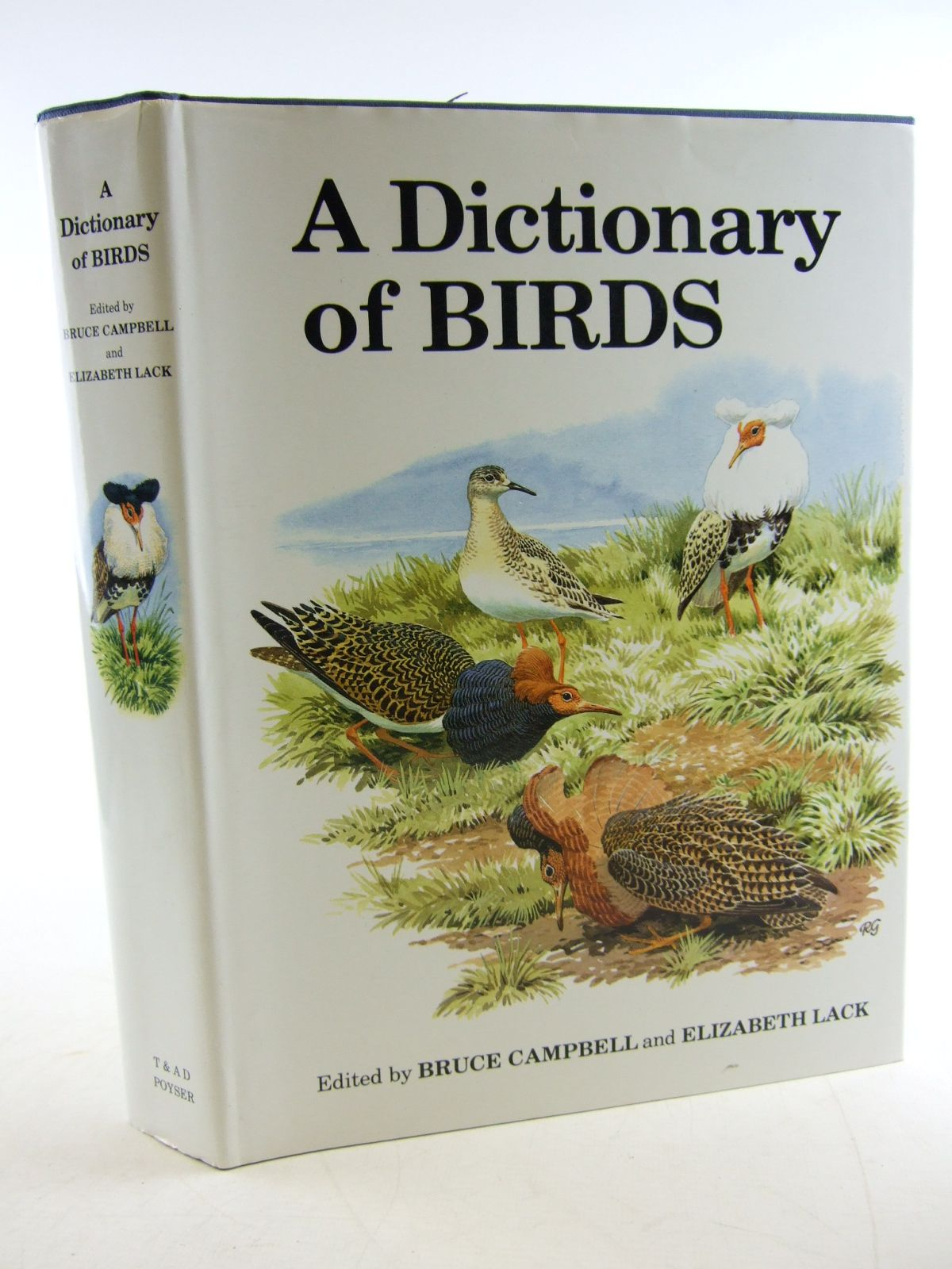 Photo of A DICTIONARY OF BIRDS written by Campbell, Bruce<br />Lack, Elizabeth published by T. & A.D. Poyser (STOCK CODE: 1806151)  for sale by Stella & Rose's Books