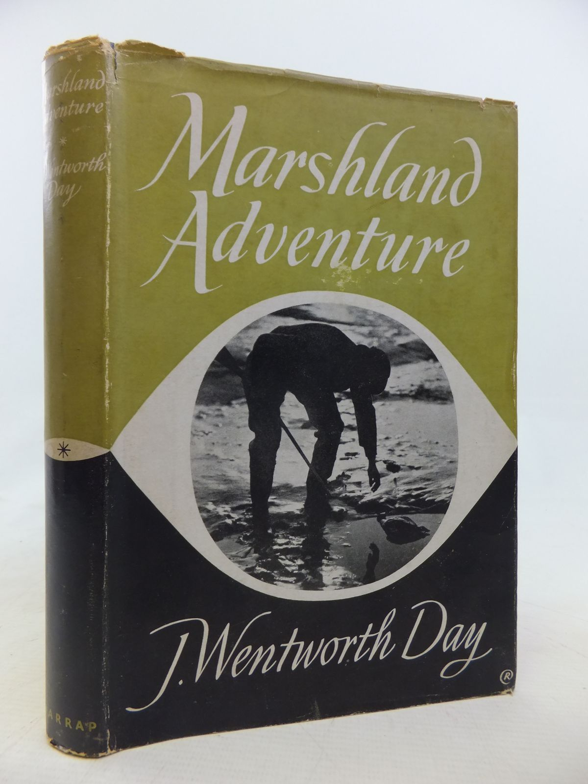 Photo of MARSHLAND ADVENTURE ON NORFOLK BROADS AND RIVERS