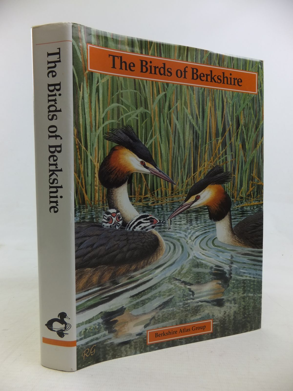 Photo of THE BIRDS OF BERKSHIRE written by Standley, Peter<br />Bucknell, N.J.<br />Swash, Andy<br />Collins, Ian D. illustrated by Gillmor, Robert published by The Berkshire Atlas Group (STOCK CODE: 1810932)  for sale by Stella & Rose's Books