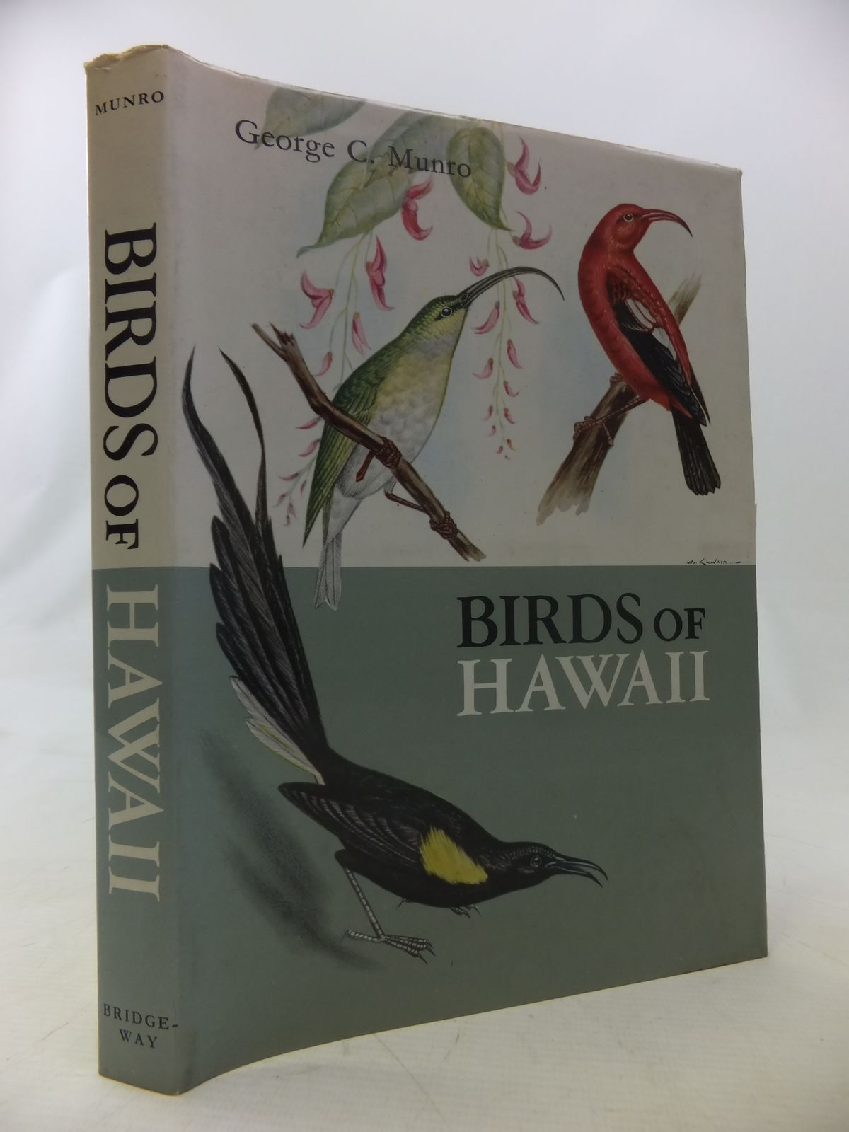 Photo of BIRDS OF HAWAII written by Munro, George C. illustrated by Oda, Y. published by Bridgeway Press (STOCK CODE: 1811089)  for sale by Stella & Rose's Books