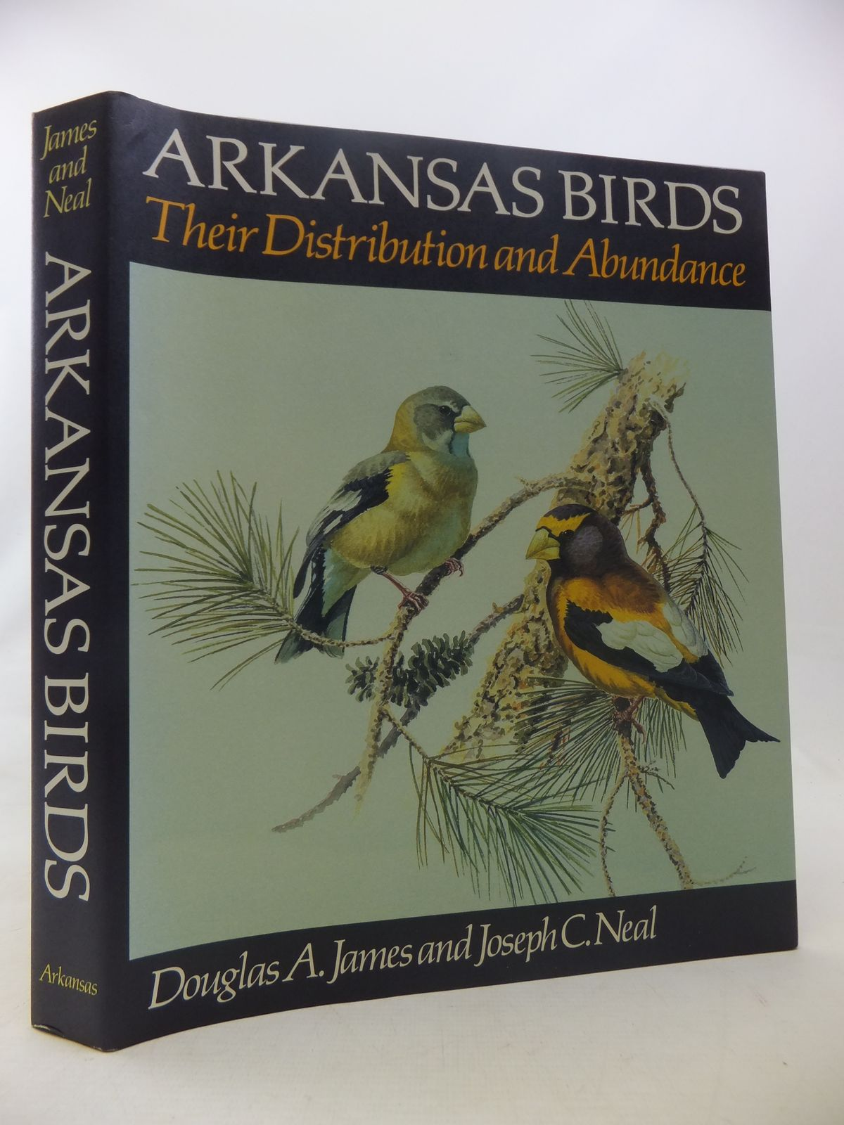 Photo of ARKANSAS BIRDS THEIR DISTRIBUTION AND ABUNDANCE written by James, Douglas A.<br />Neal, Joseph C. illustrated by Plank, David<br />Bruch, Sigrid James published by The University Of Arkansas Press (STOCK CODE: 1811096)  for sale by Stella & Rose's Books