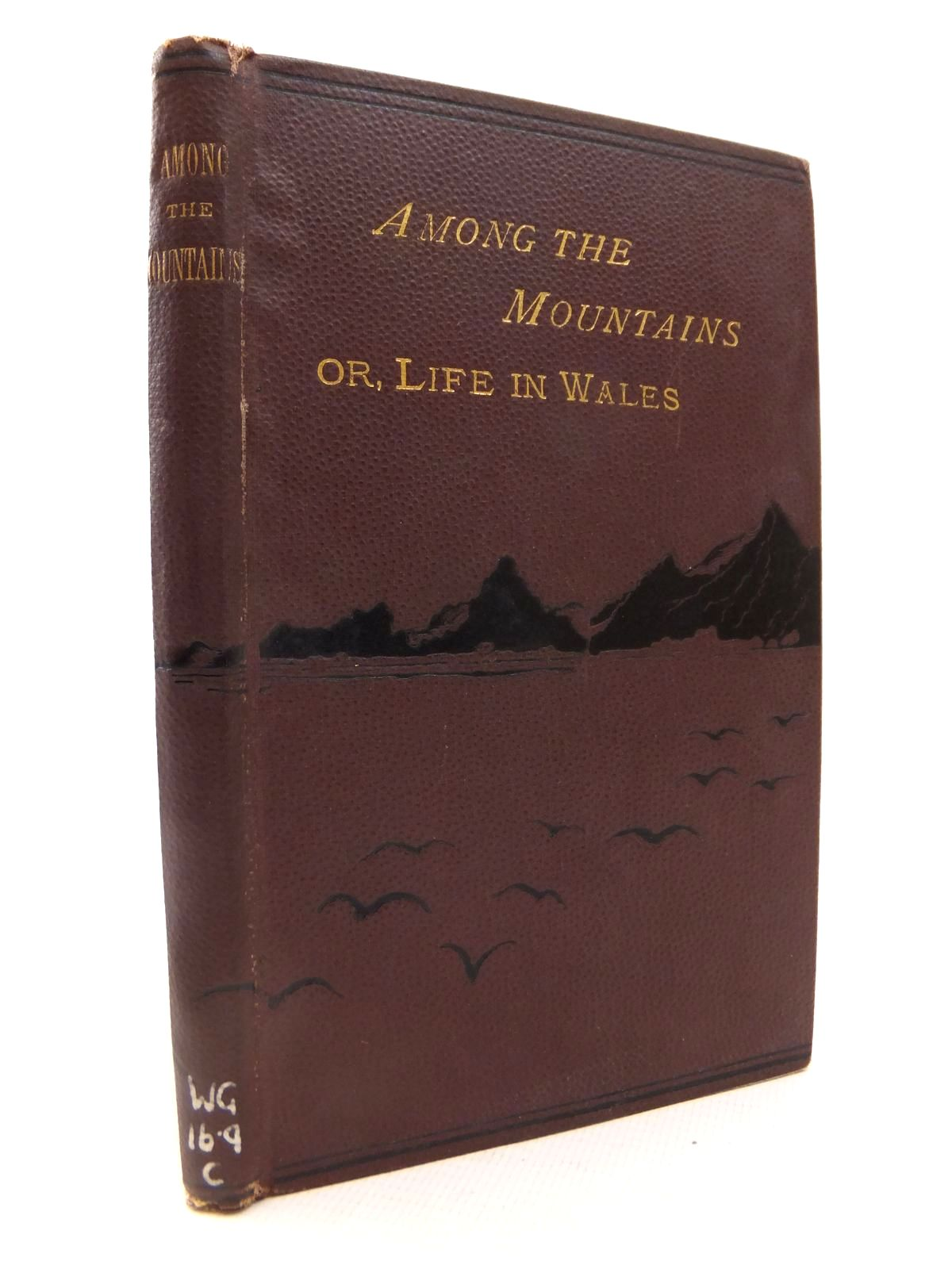 Photo of AMONG THE MOUNTAINS; OR, LIFE IN WALES written by Ceredig, published by J. Davies, J. Clarke & Co (STOCK CODE: 1812843)  for sale by Stella & Rose's Books