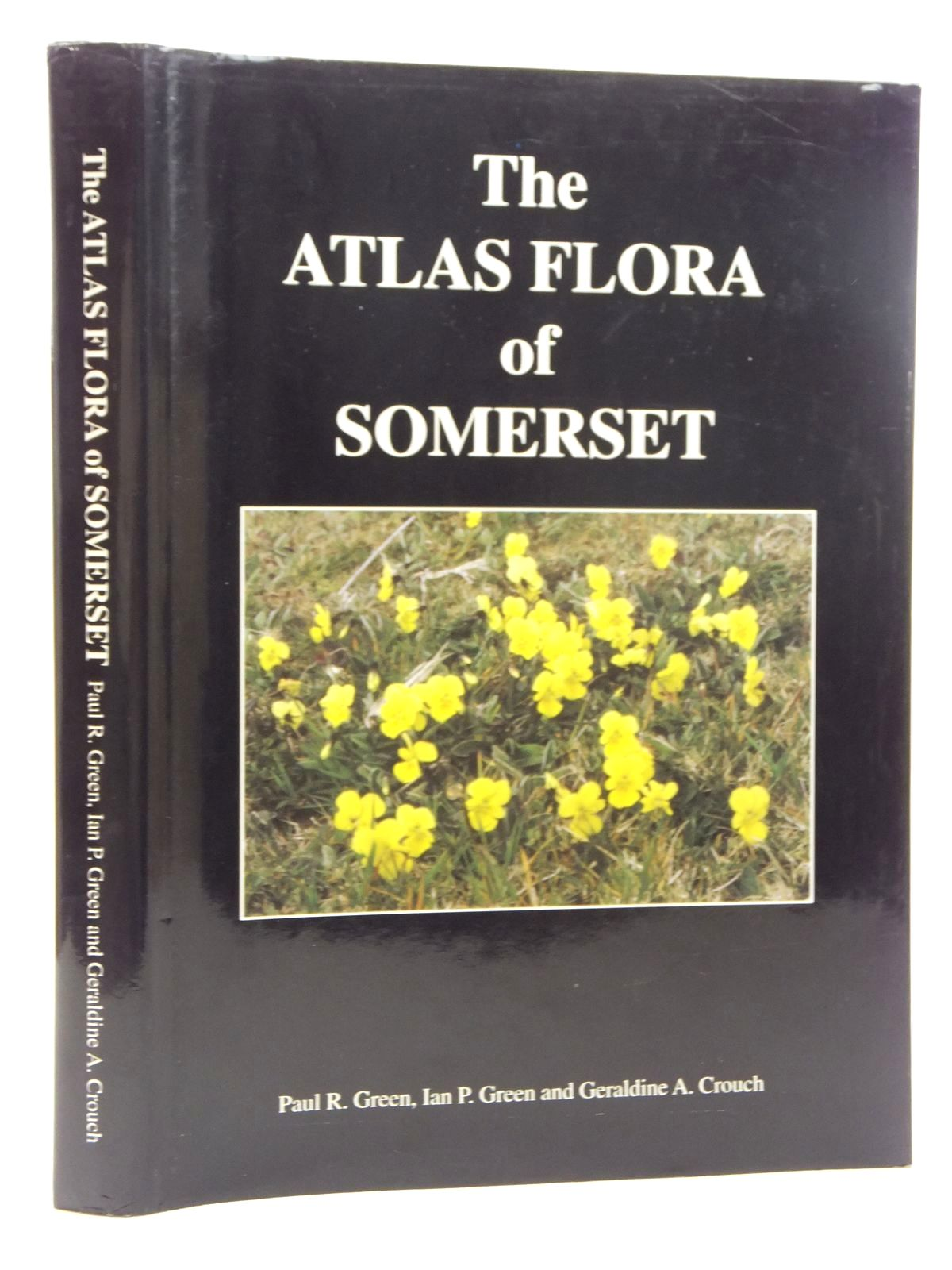 Photo of THE ATLAS FLORA OF SOMERSET written by Green, Paul R.<br />Green, Ian P.<br />Crouch, Geraldine A. published by The Authors (STOCK CODE: 1814322)  for sale by Stella & Rose's Books