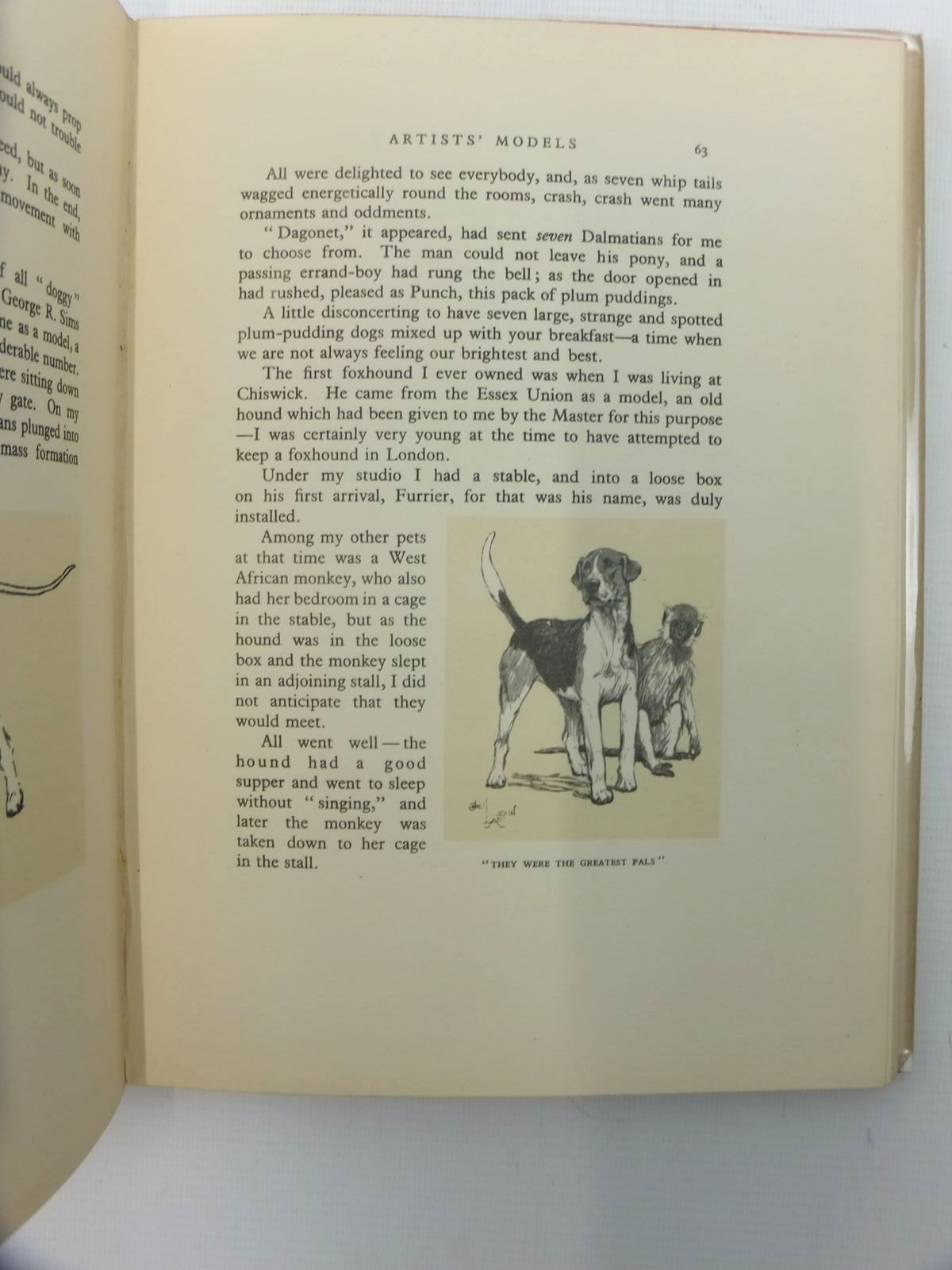 Photo of DOGS OF CHARACTER written by Aldin, Cecil illustrated by Aldin, Cecil published by Eyre & Spottiswoode (STOCK CODE: 1814758)  for sale by Stella & Rose's Books
